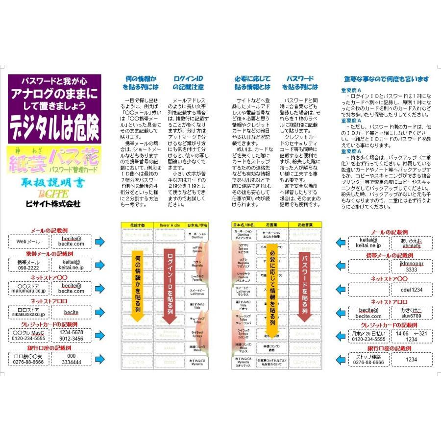 紙芸パス花お得S(両面)|beciteapps|07