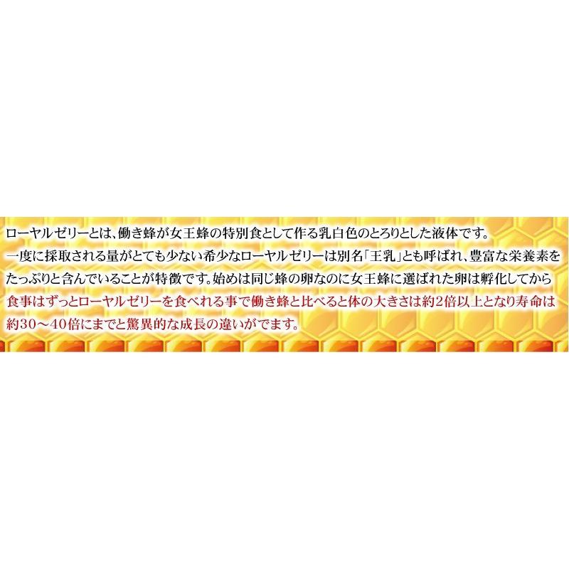 【送料無料】マルチビタミン サプリメント  ローヤルゼリー(約3ヵ月分/90粒入り)|beety|10