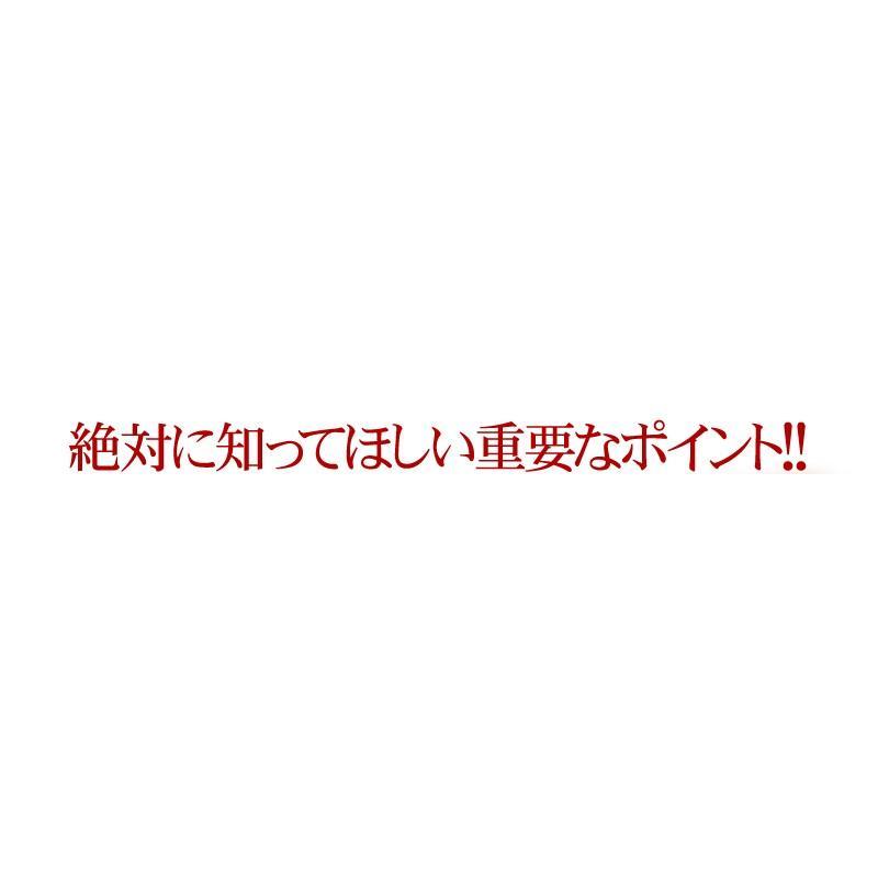 【送料無料】マルチビタミン サプリメント  ローヤルゼリー(約3ヵ月分/90粒入り)|beety|11