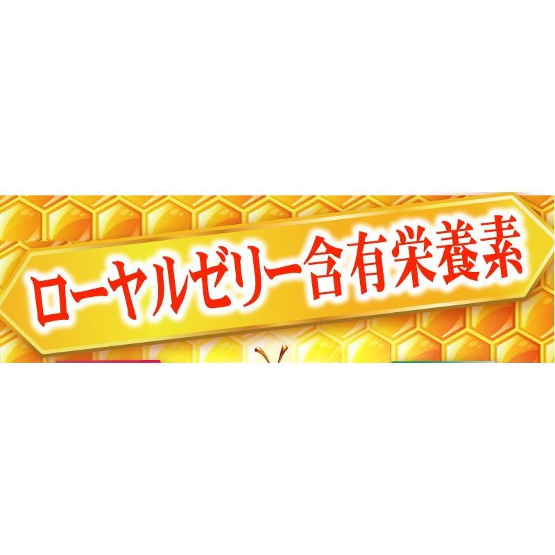 【送料無料】マルチビタミン サプリメント  ローヤルゼリー(約3ヵ月分/90粒入り)|beety|12
