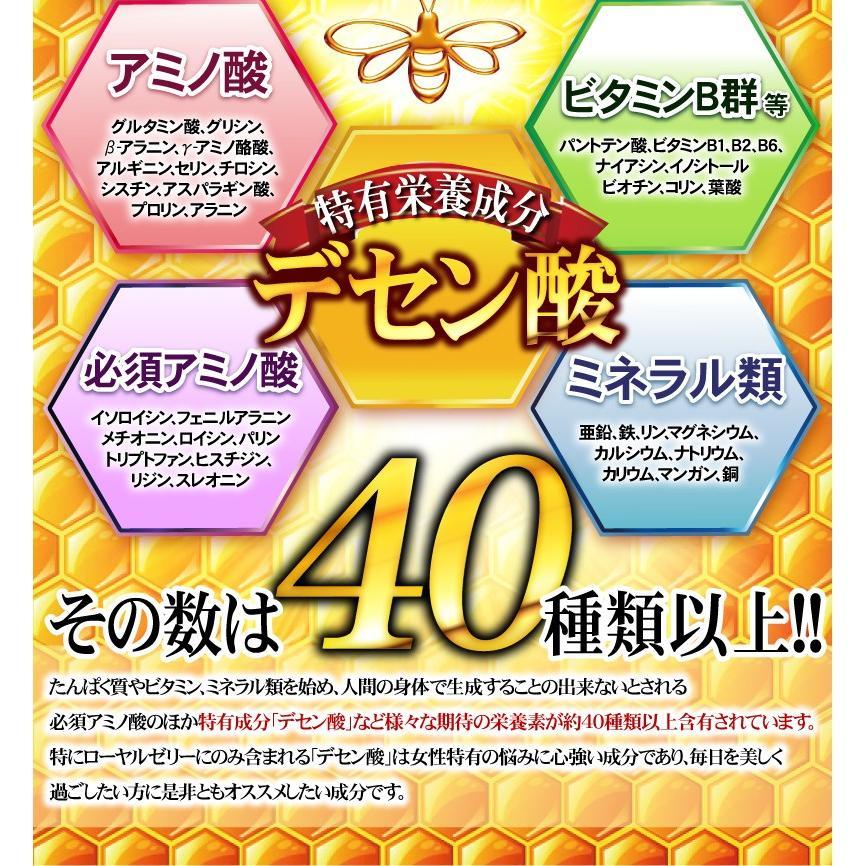 【送料無料】マルチビタミン サプリメント  ローヤルゼリー(約3ヵ月分/90粒入り)|beety|13