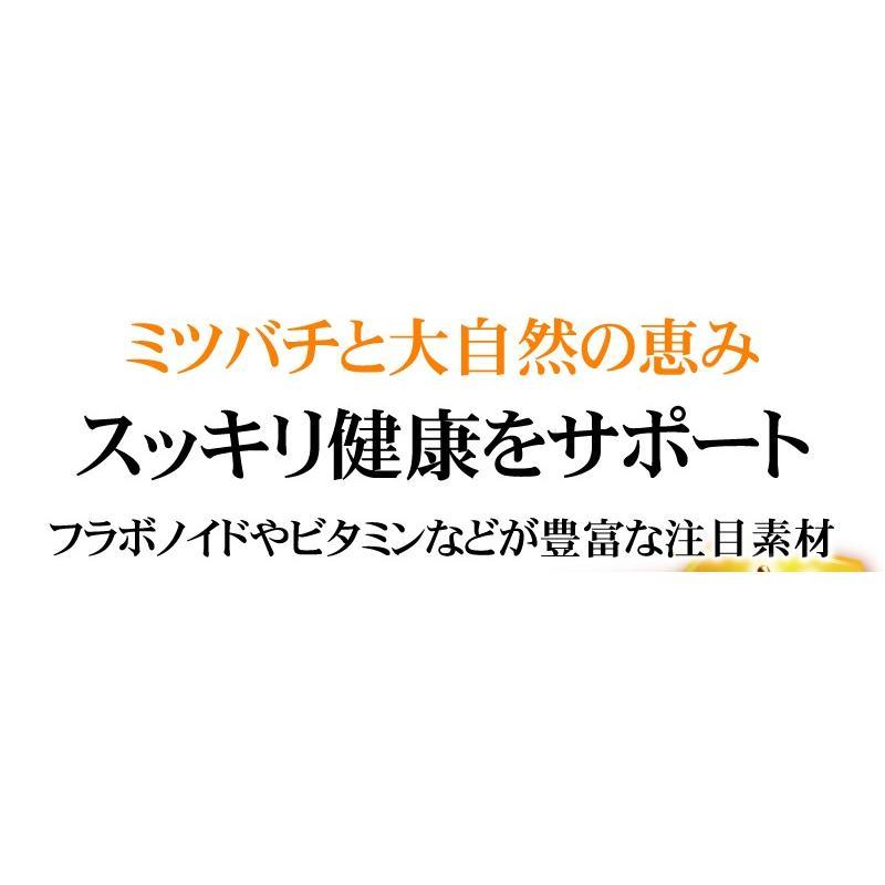 【送料無料】マルチビタミン サプリメント  ローヤルゼリー(約3ヵ月分/90粒入り)|beety|14