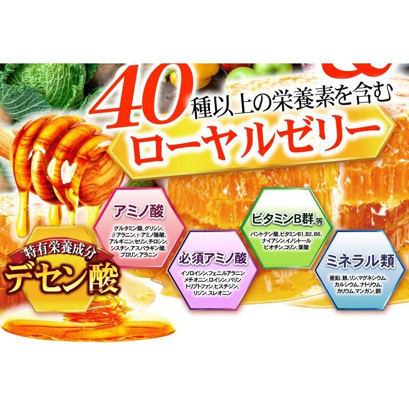 【送料無料】マルチビタミン サプリメント  ローヤルゼリー(約3ヵ月分/90粒入り)|beety|04