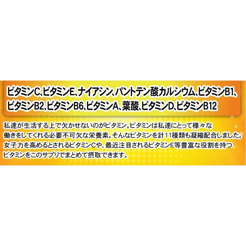 【送料無料】マルチビタミン サプリメント  ローヤルゼリー(約3ヵ月分/90粒入り)|beety|07
