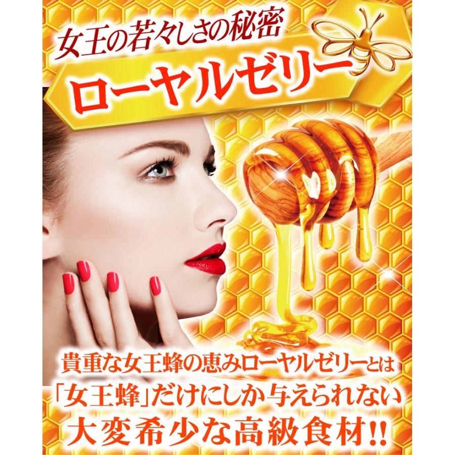 【送料無料】マルチビタミン サプリメント  ローヤルゼリー(約3ヵ月分/90粒入り)|beety|09