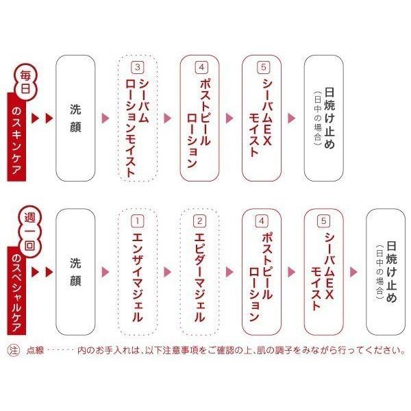 【送料無料3本セット】デルファーマ シーバムEXモイスト Derpharm Sebum EX moist|befile|02