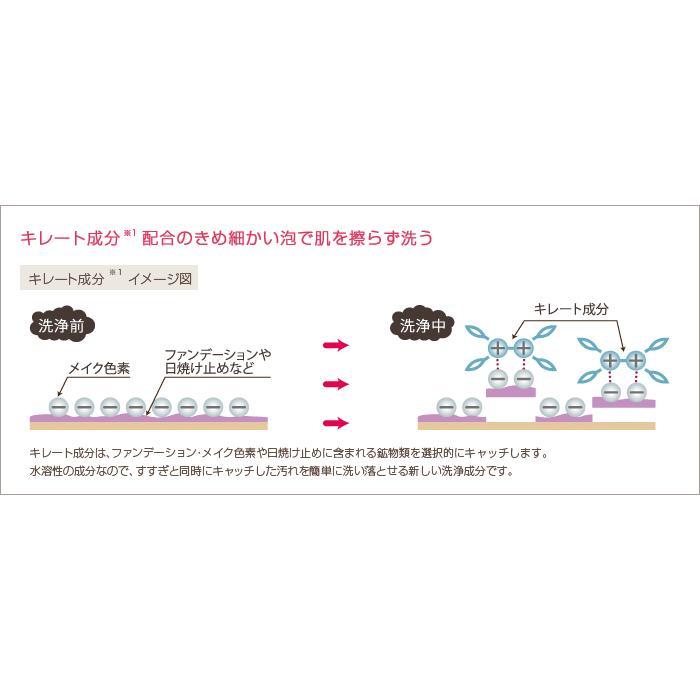 〈詰替用〉プラスリストア クレンジングソープ泡 ホームケア JMEC plus RESTORE (大容量500ml=2.5本分) ※詰め替えボトル 単体では泡はでません。|befile|03