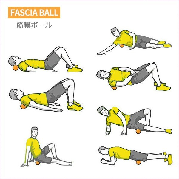 筋膜リリース ボール 筋膜ボール きんまくリリース トリガーポイント ボール マッサージボール 筋肉マッサージ ダブルボール W 約13cm 送料無料|befun|18