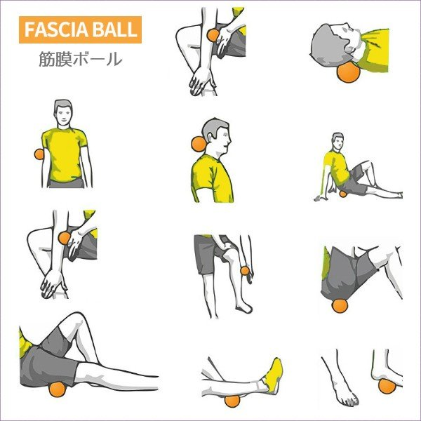 筋膜リリース ボール 筋膜ボール きんまくリリース ボール トリガーポイント マッサージボール 筋肉マッサージ シングルボール S 約6.5cm 送料無料|befun|14