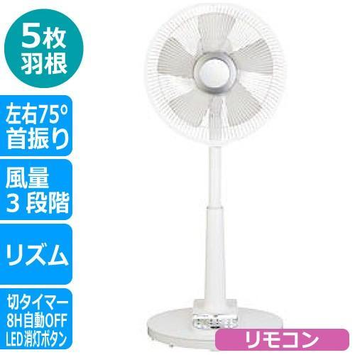 商舗 在庫処分 扇風機 リビング扇風機 内祝い リモコン付き 3段階風量調整 首振り CFRC205 シィー C:NET C ネット
