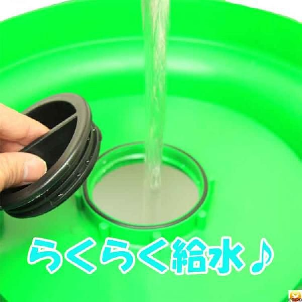 【給水口付】自動給水器 5L(高受皿) 【ニワトリ キジ類用】|belbird|03