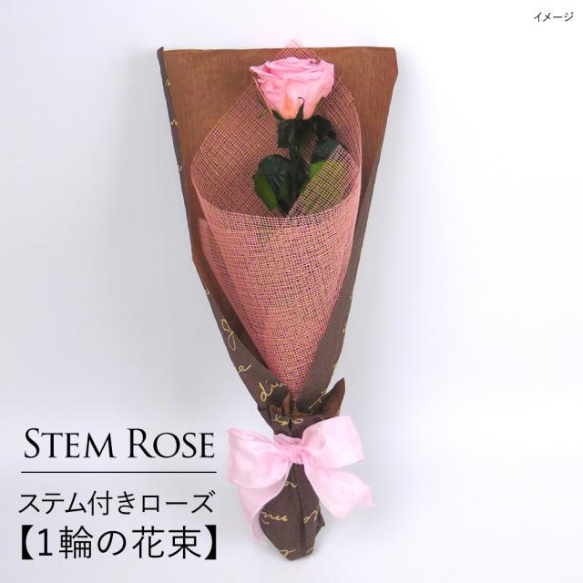 誕生日 花 プレゼント  プリザーブドフラワー  #ステム付きローズ【 1輪の花束】「なでしこJAPAN」にカズが贈ったバラ  あすつく対応|belles-fleurs