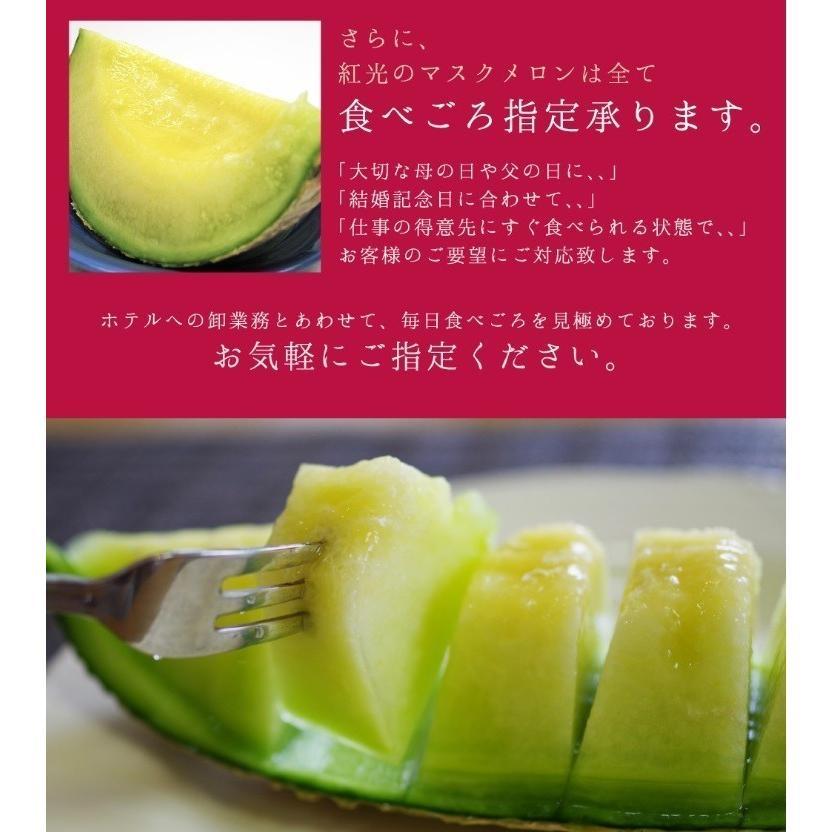 静岡産 クラウンメロン 大玉 1玉 1.4kg前後 マスクメロン フルーツ ギフト 内祝  果物|benikou|06