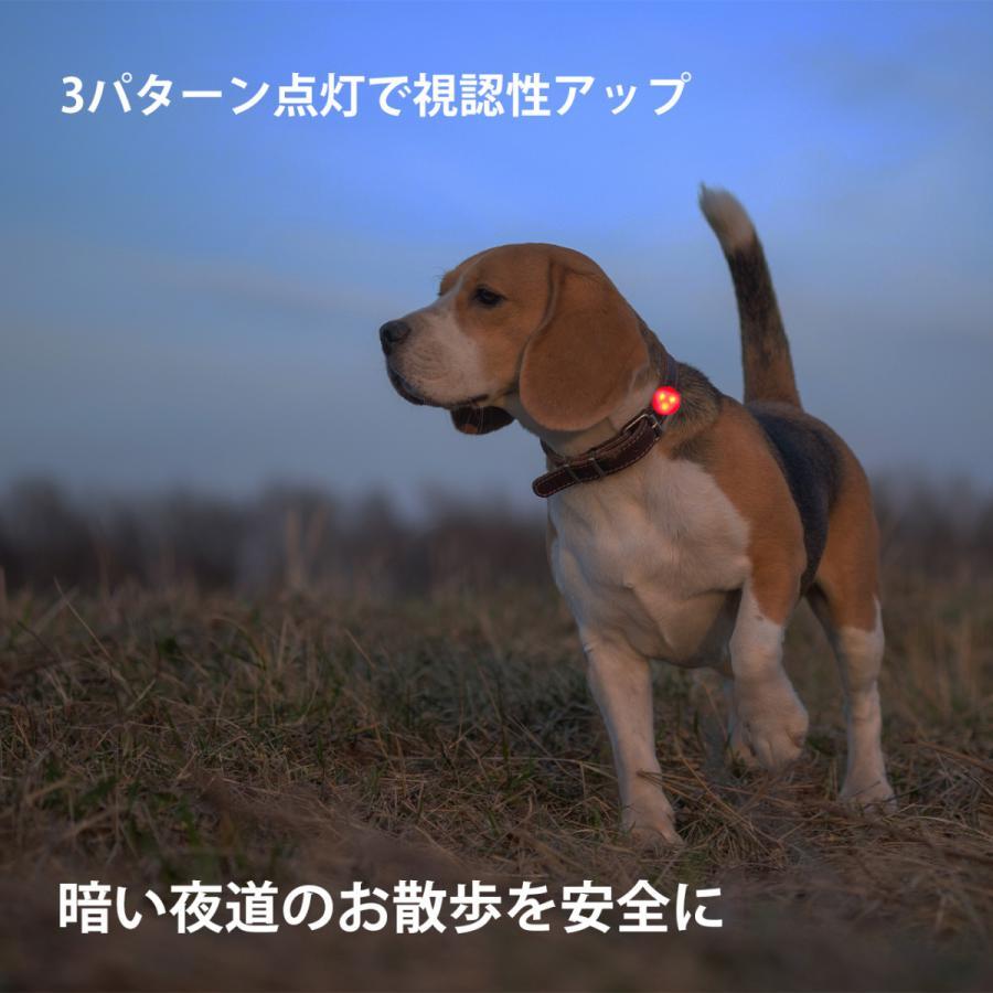 犬 散歩 ライト シリコン LED お散歩ライト 7色 犬 夜間 安心 安全 補助 グッズ 小型犬 中型犬 大型犬 首輪 ハーネス 等に|best-friends|02