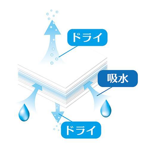ノンダスト ドライペーパー G05 SANKO(三晃/サンコー)|bestfactoryshopping2|04