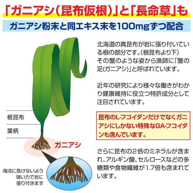 フコイダン 吸収5倍 フコイダンライフ・ナノ 1.4g×60包 沖縄フコイダン 低分子 高分子 730mg ガニアシ|bh-labo24|11