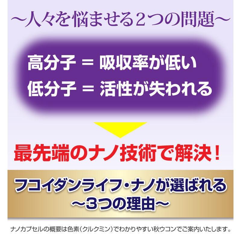 フコイダン 吸収5倍 フコイダンライフ・ナノ 1.4g×60包 沖縄フコイダン 低分子 高分子 730mg ガニアシ|bh-labo24|05