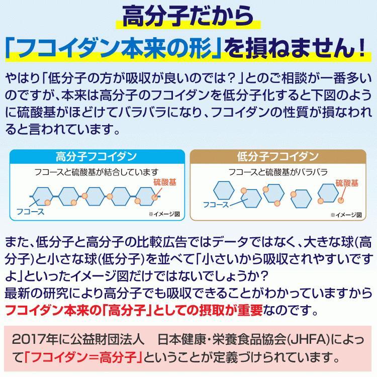 フコイダン 吸収5倍 フコイダンライフ・ナノ 1.4g×60包 沖縄フコイダン 低分子 高分子 730mg ガニアシ|bh-labo24|10
