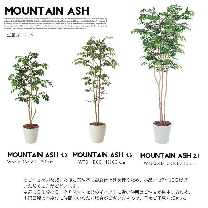マウンテンアッシュ1.3(mountain ash ) イミテーショングリーン|bicasa|03