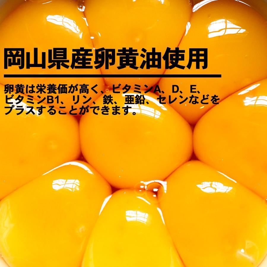 にんにく卵黄 番組
