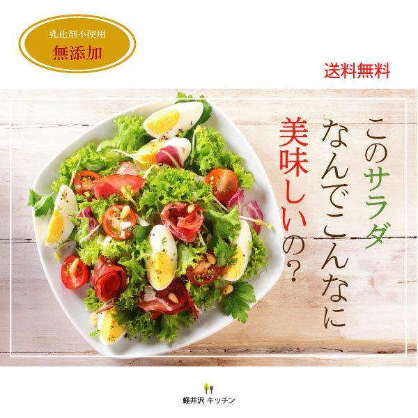 野菜が美味しいディップ風ドレッシング  お得な 200ml×3本セット 手作り無添加|bigfoota-shop|17