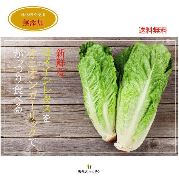野菜が美味しいディップ風ドレッシング  お得な 200ml×3本セット 手作り無添加|bigfoota-shop|19