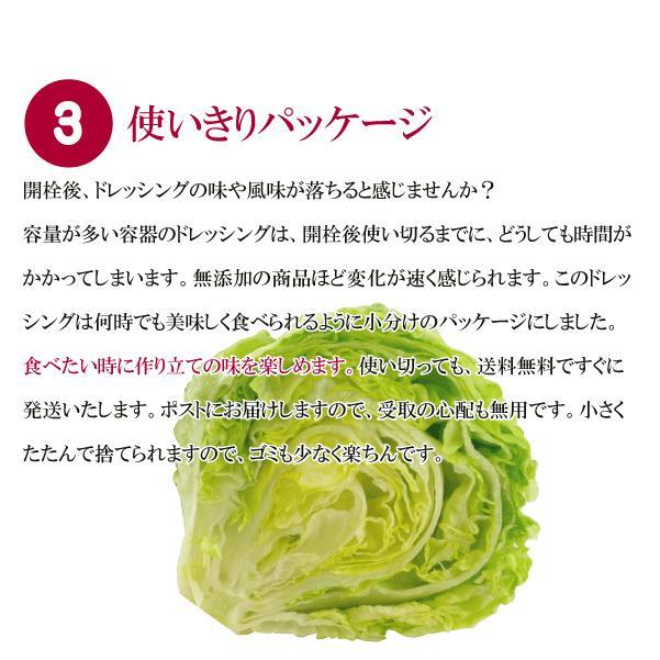 野菜が美味しいディップ風ドレッシング  お得な 200ml×3本セット 手作り無添加|bigfoota-shop|04