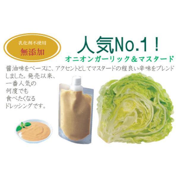 野菜が美味しいディップ風ドレッシング  お得な 200ml×3本セット 手作り無添加|bigfoota-shop|06