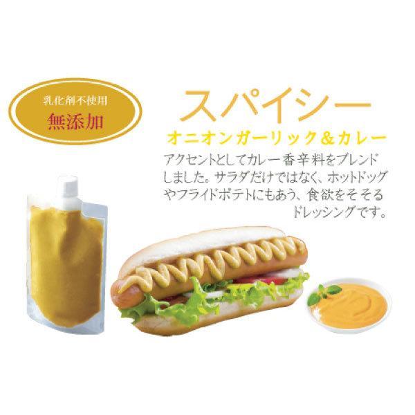 野菜が美味しいディップ風ドレッシング  お得な 200ml×3本セット 手作り無添加|bigfoota-shop|08