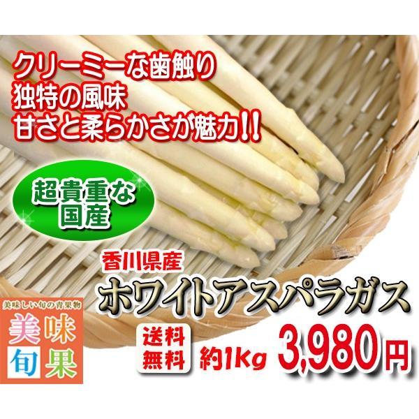 ホワイトアスパラガス 約1kg 香川県産|bimi-shunka