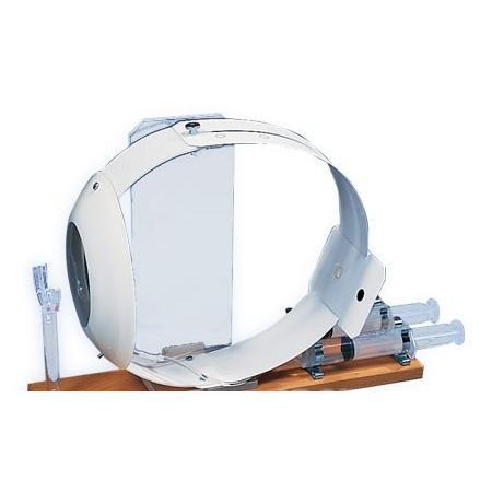 3B社 人体模型  眼球模型 視覚機能学習モデル(水晶体可変式)(w16002) 鍼灸 模型
