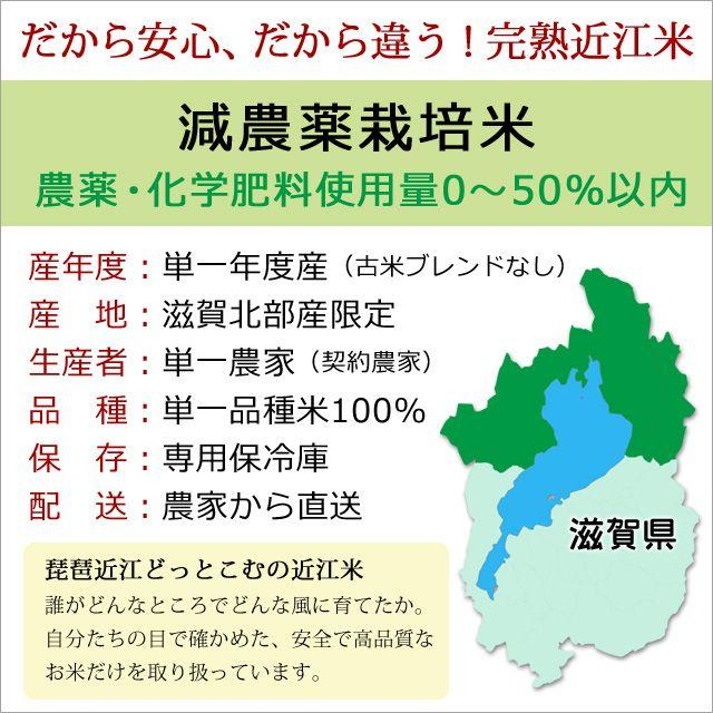 2020年度 米 お米 5kg あきたこまち 滋賀県産 白米 玄米 ファーム虎姫 送料無料 滋賀の幸|biwaoumi|03