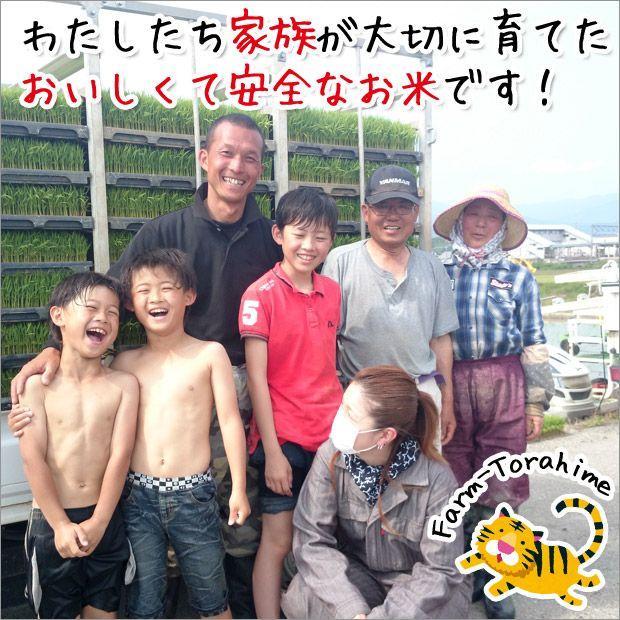 2020年度 米 お米 5kg あきたこまち 滋賀県産 白米 玄米 ファーム虎姫 送料無料 滋賀の幸|biwaoumi|05