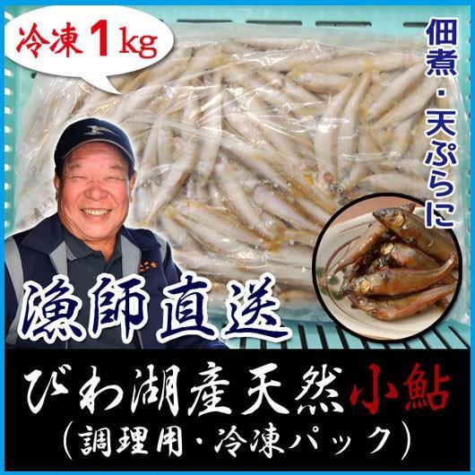 天然 小鮎 1000g 冷凍 調理用 琵琶湖産 滋賀県産 魚友商店 送料無料|biwaoumi