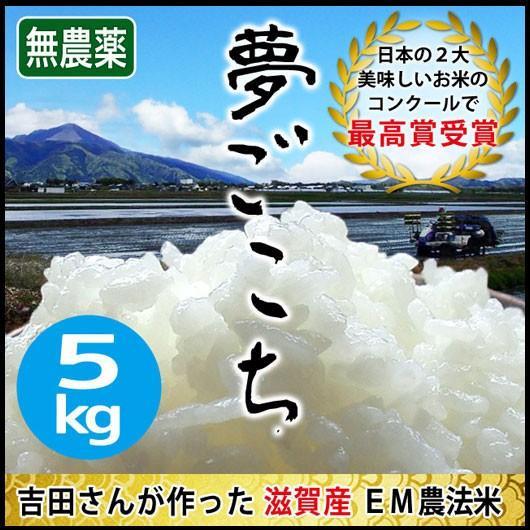 令和2年産 2020年産 米 お米 5kg 夢ごこち 無農薬 滋賀県産 吉田農園 白米 玄米 送料無料|biwaoumi