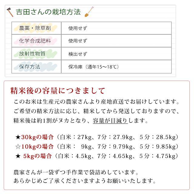 令和2年産 2020年産 米 お米 5kg 夢ごこち 無農薬 滋賀県産 吉田農園 白米 玄米 送料無料|biwaoumi|05