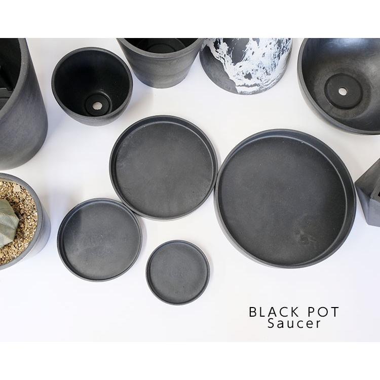 ブラックポット用受皿 16cm 【サボテン/頑丈/おしゃれ/塊根植物/多肉/黒プラスチック鉢 】|biyori|05