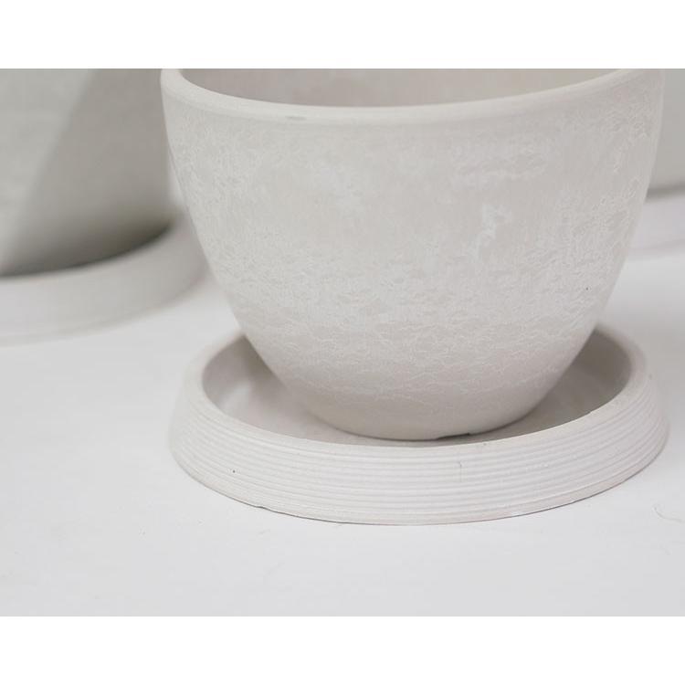 ライン受皿 12cm 【サボテン/頑丈/おしゃれ/塊根植物/多肉/黒プラスチック鉢 】コーデックス biyori 13