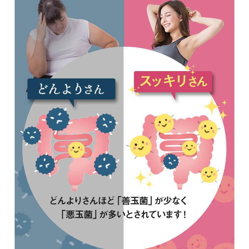 体内フローラ サプリ ビオフル BIOFULL (31粒/1袋) ダイエット 腸内 酪酸菌 菌活 腸活 善玉菌 美ボディ|bizento|08