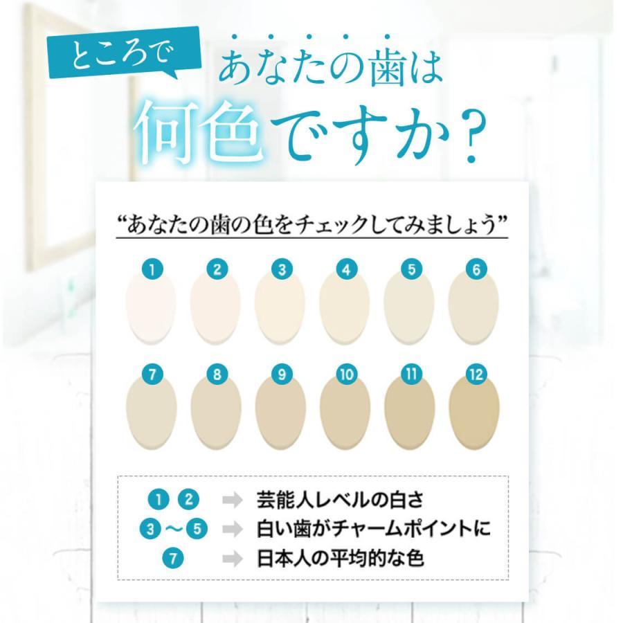 ホワイトニング 歯磨き粉 歯磨きジェル ブレッシュホワイトニング (30g/2個) 黄ばみ やに 歯周病 口臭対策 ポリリン酸 セルフ 美白 bizento 07