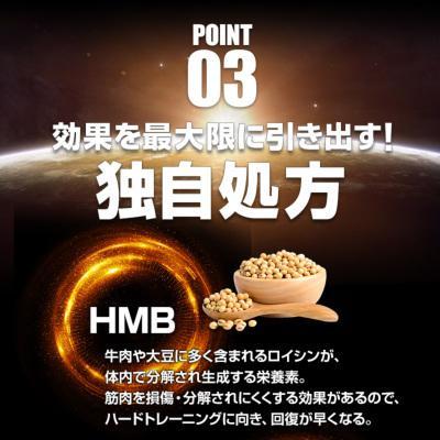 鍛神 鍛神プロテイン hmb 鍛神 キタシン チョコストロベリー風味 ホエイプロテイン 1kg プロテイン配合 BCAA配合 アミノ酸配合 bizento 07