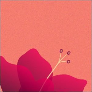 ポスター A3サイズ 『Cinq ピンク』 アート/花,植物 おしゃれポスター/Interior Art Poster|blankwall|03