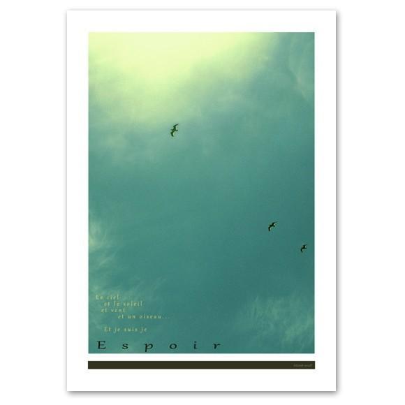 インテリアポスター A2サイズ 『Espoir』 フォト 自然 海鳥 人気 おしゃれポスター Interior Art Poster blankwall