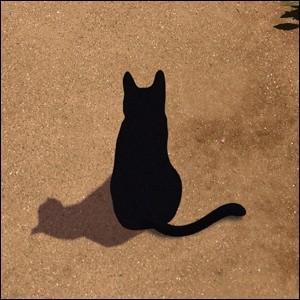 シルエットキャット 『Garden』 ポスター A2サイズ ネコ ねこ 猫 フォト 黒猫 インテリア アート blankwall 02