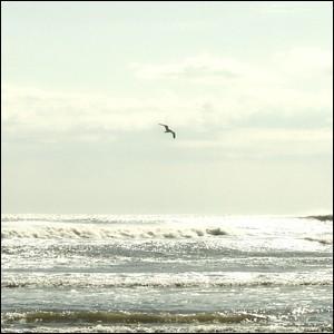 ポスター A2サイズ 『Splendeat』 フォト 風景,景色 インテリア アート 海|blankwall|02
