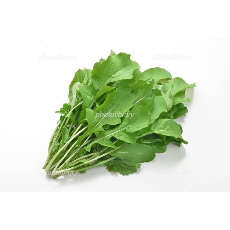 ムソーの安心野菜 冷蔵 特別栽培 ルッコラ 未使用 50g 割り引き