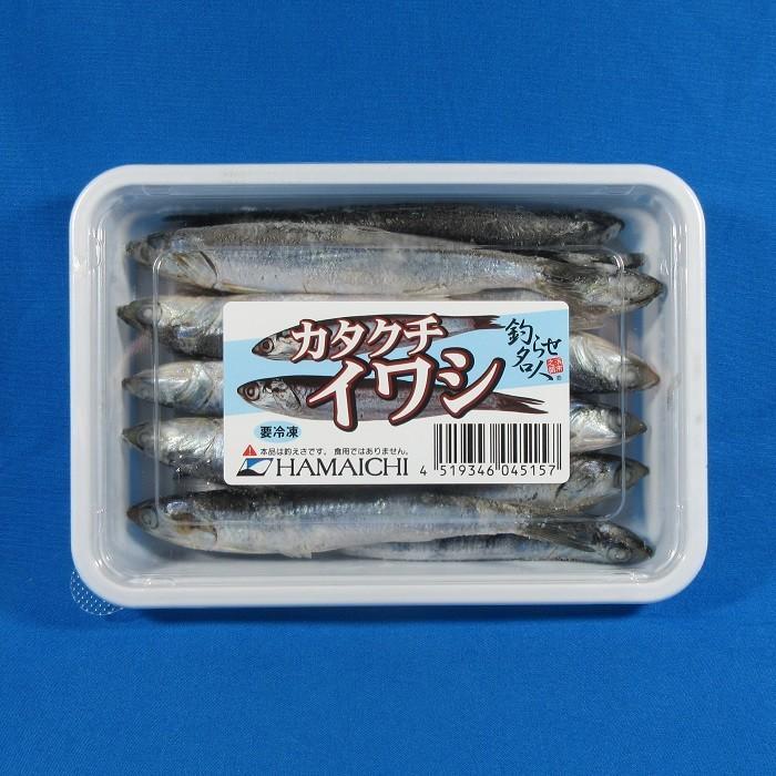 カタクチイワシ メーカー直売 海上釣堀 安値 釣りえさ サシエサ いわし 冷凍