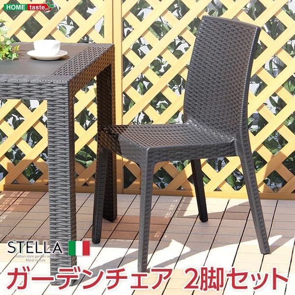 ガーデン パーソナルチェア 2脚セット 〔ブラック〕 幅約46cm 洗える プラスチック 『ステラ STELLA』 〔店舗〕〔代引不可〕