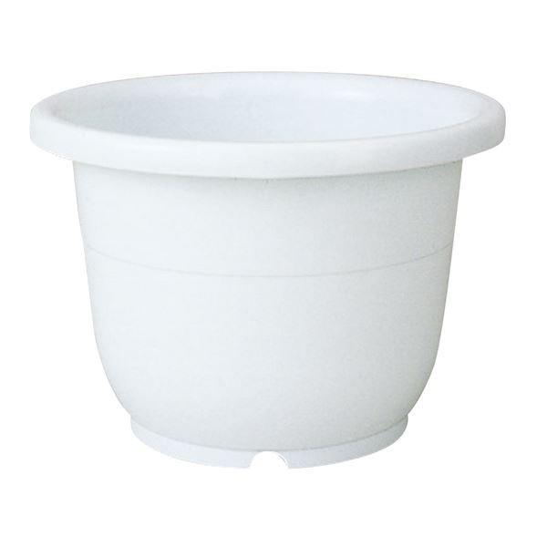 (まとめ) ベーシック 植木鉢/ポット 〔輪鉢 8号 ホワイト〕 穴付き シンプル ガーデニング用品 園芸 〔×60個セット〕