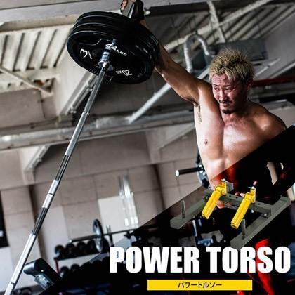 パワートルソー/ 筋トレ 筋肉 上腕二頭筋 スポーツジム 肉体改造 背筋 懸垂 ディップス 背中 チンニング 筋力